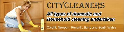 _wsb_427x110_citycleaners